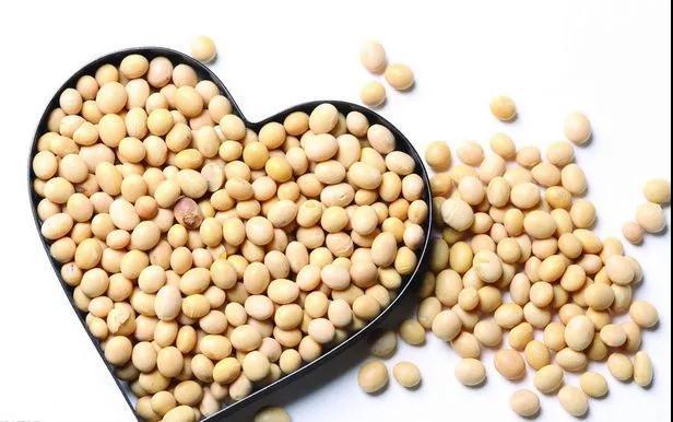 大豆异黄酮对人体有5大好处